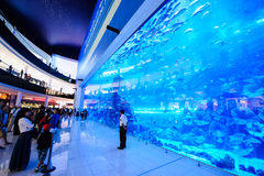 Alameda de Dubai, Dubai, UAE Imagens de Stock