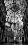Alameda de Itália, Nápoles Foto de Stock Royalty Free