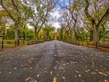 Alameda del Central Park Imagen de archivo