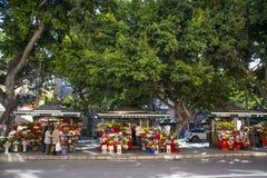 Alameda Principal Malaga Royalty Free Stock Image