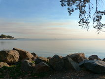 Alameda Sunset. Peaceful view of the Bay with rocks, branches, and water Stock Photo