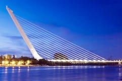 alamillo del puente Royaltyfri Fotografi