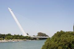 alamillo del puente royaltyfria bilder