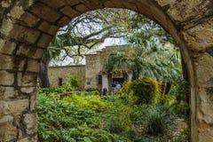 Alamo zdjęcia royalty free