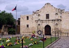 Alamo Stock Image