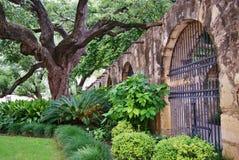 Alamo gångbana Arkivbilder