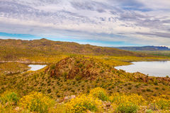 Alamo Lake State Park in Arizona Royalty Free Stock Images