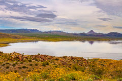 Alamo Lake State Park in Arizona Royalty Free Stock Photo