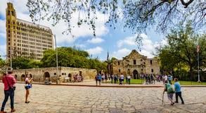 Alamo Paza Obrazy Royalty Free