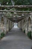 alamo sidowalkway Royaltyfri Fotografi