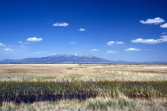 Alamosa National Wildlife Refuge in Colorado. Alamosa National Wildlife Refuge is a great marsh on the Rio Grande, with Blanca Mountain in the background Royalty Free Stock Images