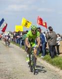 Alan Marangoni - Paryski Roubaix 2014 Zdjęcia Royalty Free
