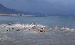 Alanya Triathlon, Antalya, Turkey. ANTALYA, TURKEY - SEPTEMBER 30, 2017: Athletes competing in swimming component of Alanya Triathlon Royalty Free Stock Photography