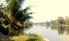 Alappuzha lake view. Beautiful lake view from the venice of the eaat Royalty Free Stock Photos