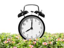 Alarm clock is Stock Image
