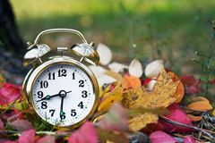 Alarm clock at autumn Royalty Free Stock Photography