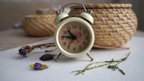 An alarm clock, dried flowers on a background royalty free stock images