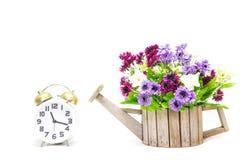 Alarm clock with flower Stock Photo