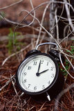 Alarm clock in the forest in autumn Royalty Free Stock Photo