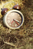 Alarm clock on grass Royalty Free Stock Photo