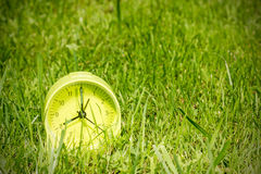 Alarm clock  in grass on the morning Stock Photo