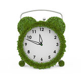 Alarm clock made from fresh leaves Stock Photos
