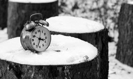 Alarm clock on natural landscape season park Stock Photo