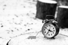Alarm clock on natural landscape season park Royalty Free Stock Photography