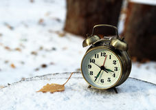Alarm clock on natural landscape season park Stock Photography