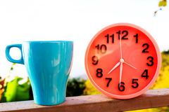 Alarm clock on natural landscape season park with coffee cup Royalty Free Stock Photography