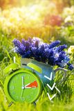 Alarm clock in nature background royalty free stock images