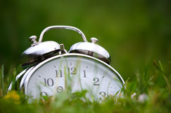 Alarm clock. Old metal alarm clock among grass and flowers Royalty Free Stock Image