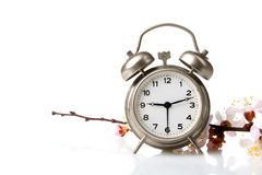 Alarm clock. Old windup loud alarm clock with a sprig of peach  on white background Stock Photography