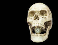 Alarm clock in opening mouth human skull. Isolated on black background with copy space Royalty Free Stock Image