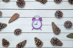 Alarm clock and pine cone. Spruce on a wooden table Stock Images