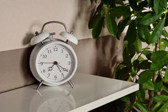 Alarm clock with a potted plant Royalty Free Stock Photo