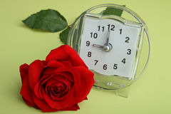 Alarm clock and rose Stock Photography