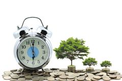 Alarm clock with Trees growing on coins money on white background, investment and business concept royalty free stock image
