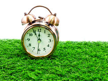 Alarm clock on white background and grass Royalty Free Stock Images