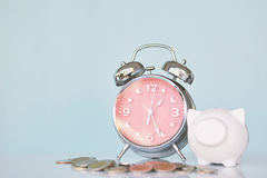 Alarm clock with white piggy bank coin on table Royalty Free Stock Photos
