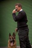 Alarma del perro Fotos de archivo