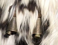 Alarmas de la mascarada Imagen de archivo libre de regalías