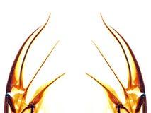 Alas abstractas del insecto Foto de archivo libre de regalías