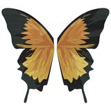 Alas de la mariposa con el camino de recortes Fotografía de archivo