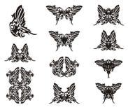 Alas de la mariposa de la forma del loro Foto de archivo