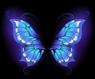 Alas de la mariposa que brillan intensamente