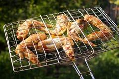 Alas de pollo cocinadas en la parrilla, brasero, en el fondo de la hierba Foco selectivo, imagen entonada, efecto de la película Imagenes de archivo