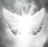 Alas del ángel Foto de archivo libre de regalías