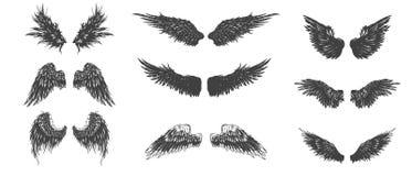 Alas fijadas Colección detallada dibujada mano de las alas ilustración del vector