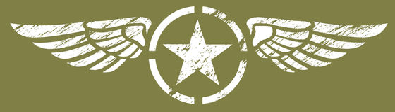 Alas militares Imagen de archivo libre de regalías